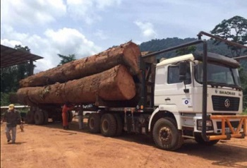 Logging Truck Designed for African Market